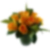 Fiori di Genova Flower Arrangement